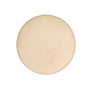 MAC Eyeshadow- Nylon